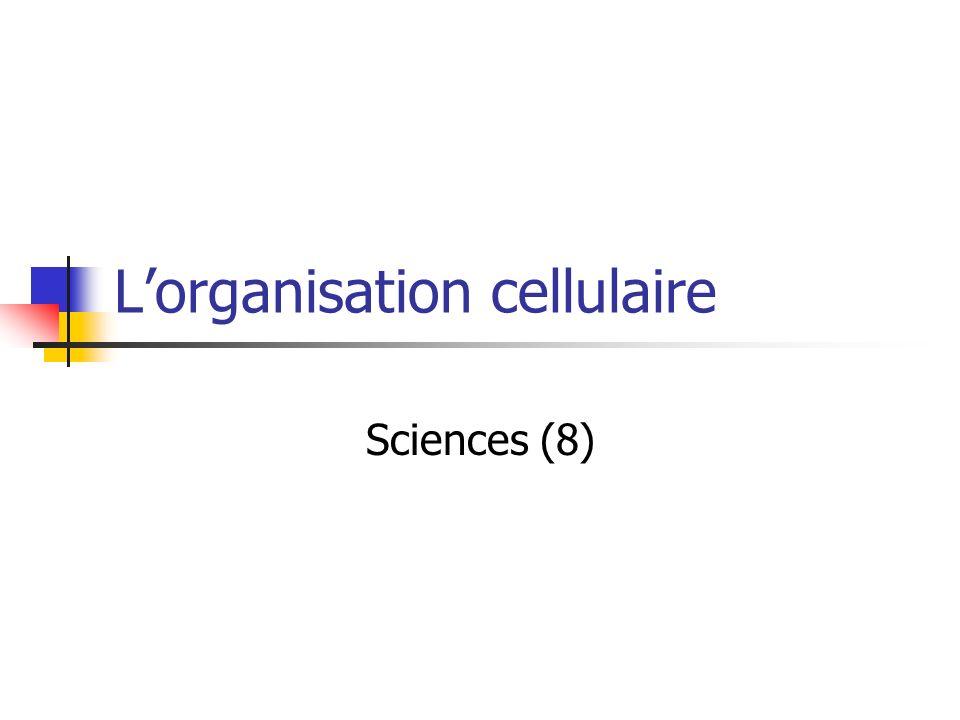 Lorganisation cellulaire Sciences (8)
