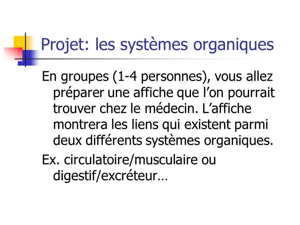 Projet: les systèmes organiques En groupes (1-4 personnes), vous allez préparer une affiche que lon pourrait trouver chez le médecin. Laffiche montrer