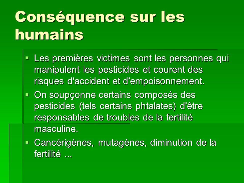 Conséquence sur les humains Les premières victimes sont les personnes qui manipulent les pesticides et courent des risques d accident et d empoisonnement.