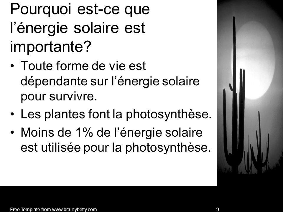 Dans les écosystèmes: Moins du 1% (0.023%) de lénergie solaire doit être dispersé au travers des chaînes alimentaires et réseaux alimentaires.
