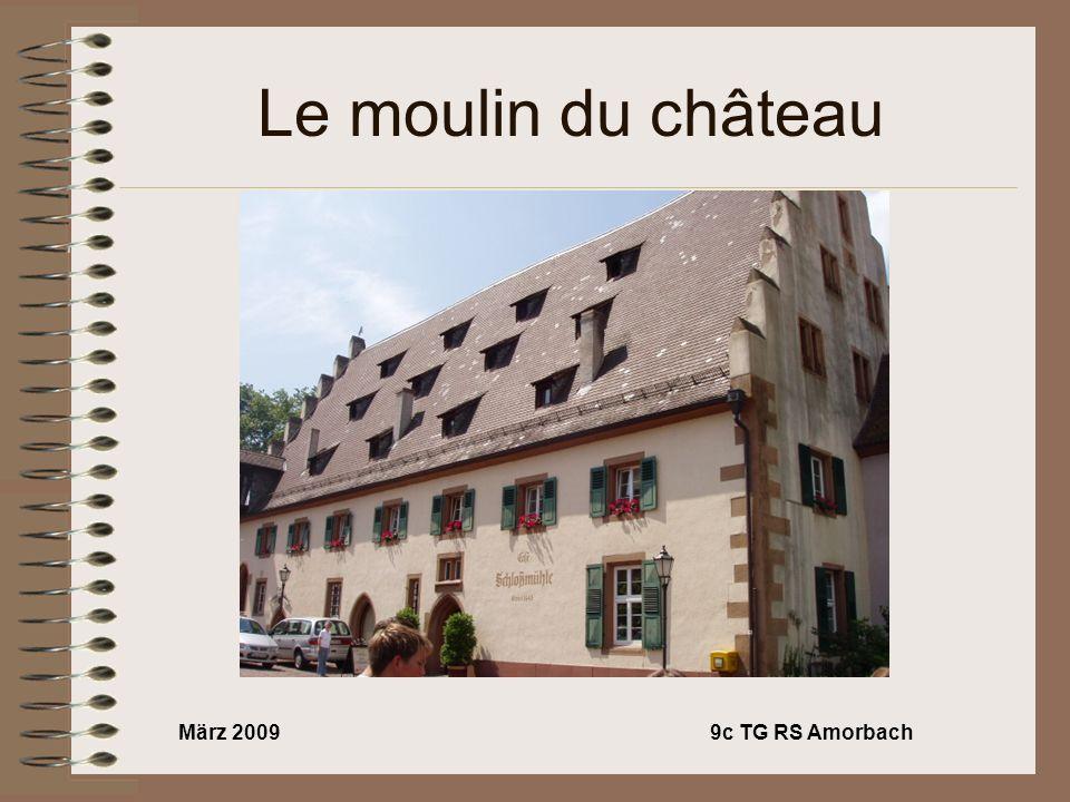 März 20099c TG RS Amorbach Le moulin du château