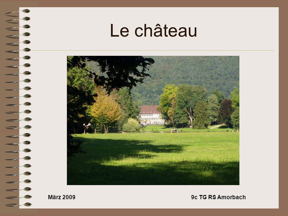 März 20099c TG RS Amorbach Le château