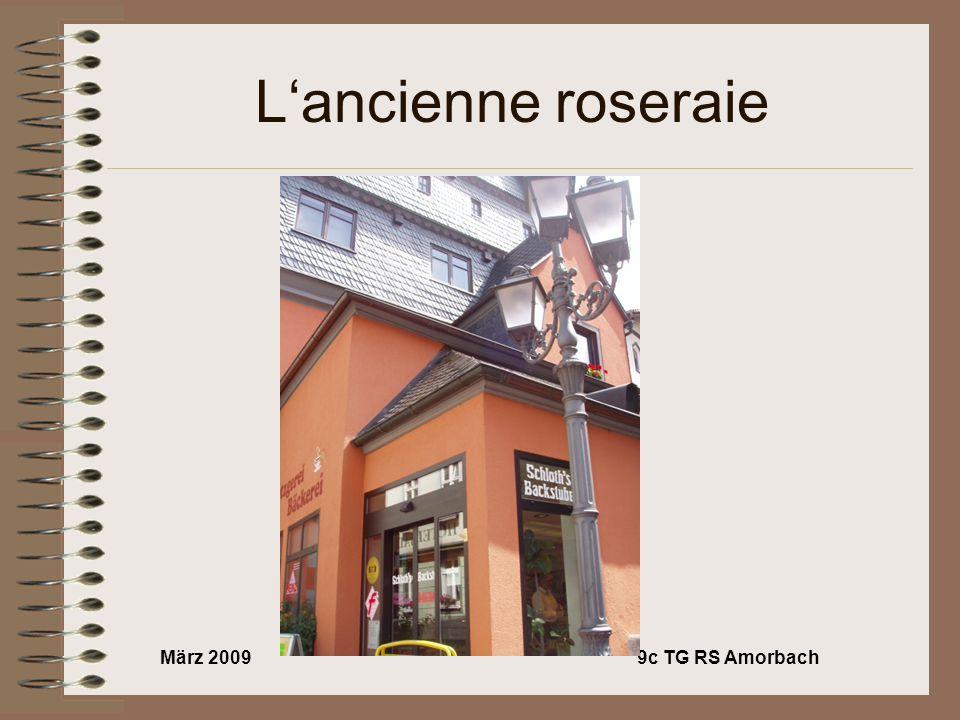 März 20099c TG RS Amorbach Lancienne roseraie