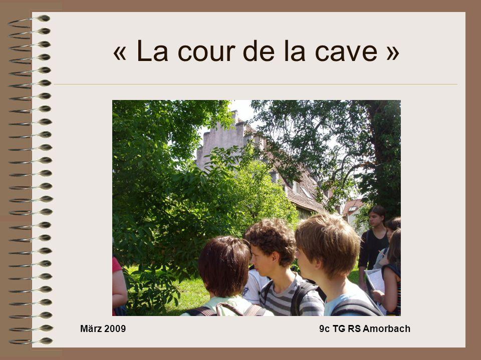 März 20099c TG RS Amorbach « La cour de la cave »