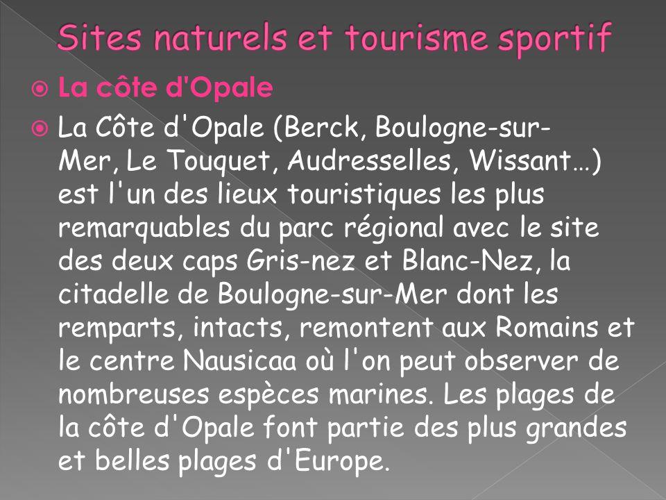 La côte d'Opale La Côte d'Opale (Berck, Boulogne-sur- Mer, Le Touquet, Audresselles, Wissant…) est l'un des lieux touristiques les plus remarquables d