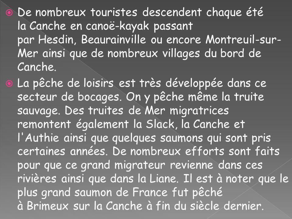 De nombreux touristes descendent chaque été la Canche en canoë-kayak passant par Hesdin, Beaurainville ou encore Montreuil-sur- Mer ainsi que de nombr