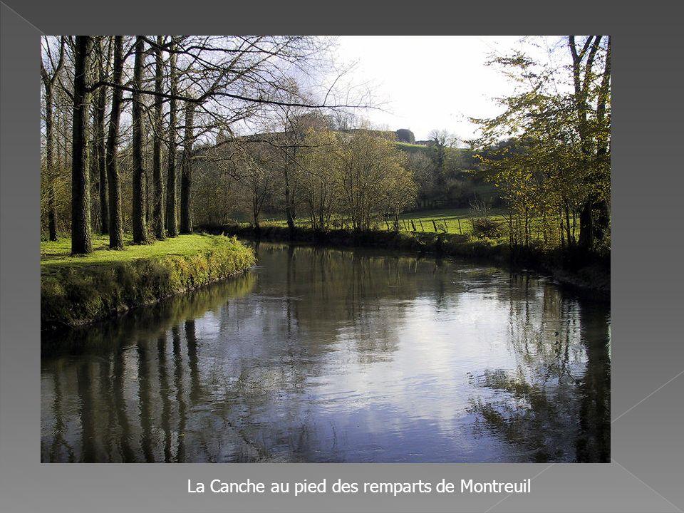 La Canche au pied des remparts de Montreuil