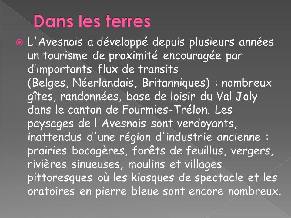 L'Avesnois a développé depuis plusieurs années un tourisme de proximité encouragée par dimportants flux de transits (Belges, Néerlandais, Britanniques