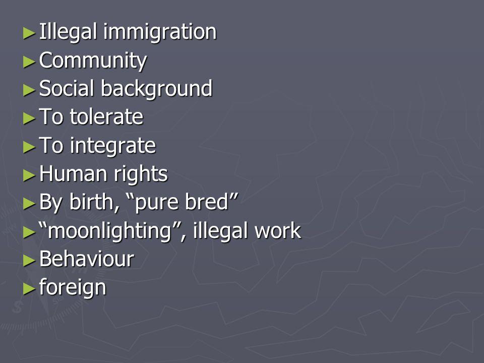 Ethnic diversity Ethnic diversity To improve To improve Cultural identity Cultural identity Banning Banning Wearing the veil Wearing the veil Roots Roots To feel excluded To feel excluded Of foreign origin Of foreign origin Racism Racism diversity diversity