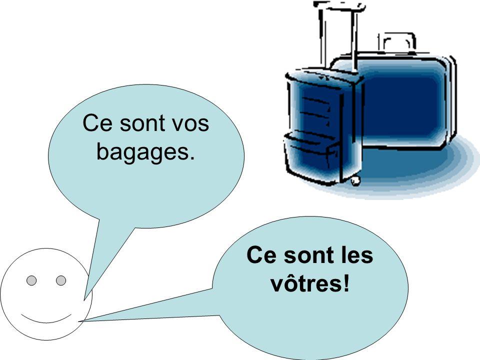 Ce sont vos bagages. Ce sont les vôtres!