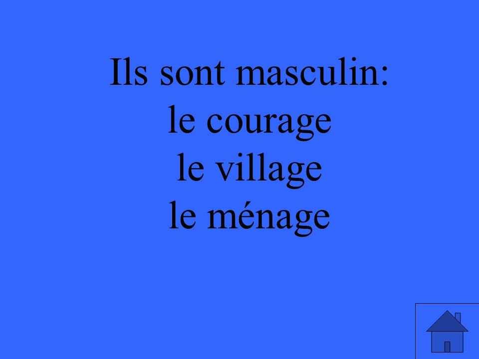 Ils sont masculin: le courage le village le ménage