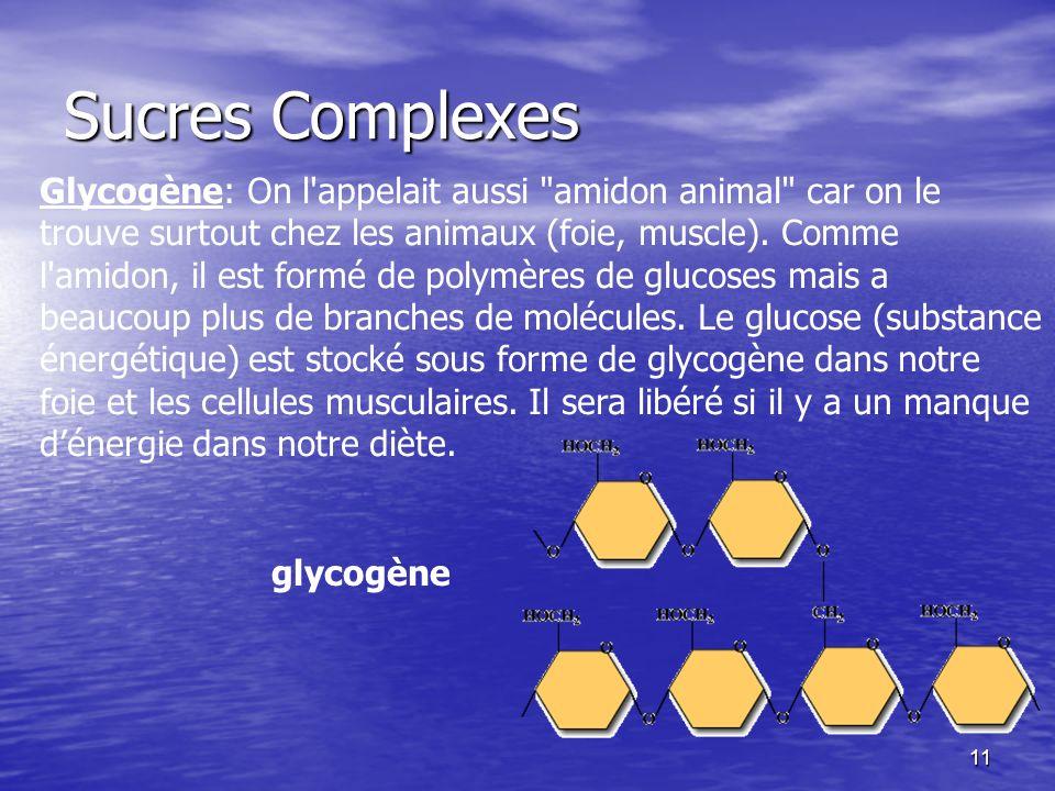 11 Sucres Complexes glycogène Glycogène: On l'appelait aussi