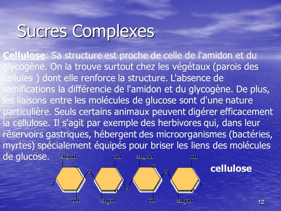 12 Sucres Complexes cellulose Cellulose: Sa structure est proche de celle de l'amidon et du glycogène. On la trouve surtout chez les végétaux (parois