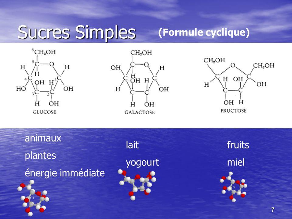 8 Sucres Simples 2 sucres simples = disaccharides 2 sucres simples = disaccharides Glucose + Fructose --> Saccharose (sucrose) (sucre de table) + H 2 O Glucose + Galactose -->Lactose (sucre retrouvé dans le lait) + H 2 O Glucose + Glucose --> Maltose (sucre retrouvé dans la bière) + H 2 O Il s agit de deux sucres simples qui se sont liés par une réaction de condensation au cours de laquelle une molécule d eau sera expulsée.