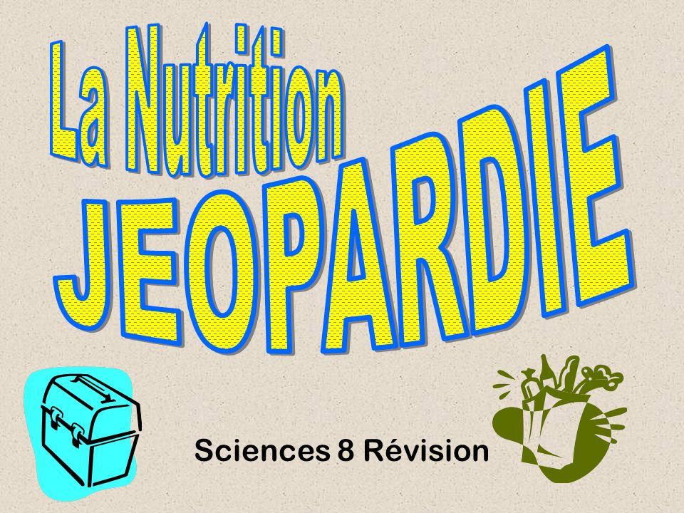 Sciences 8 Révision