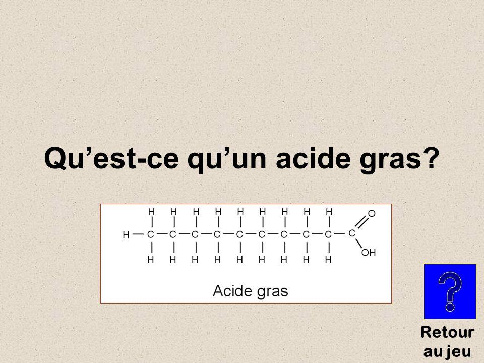 Petites molécules formant des longues chaînes de lipides