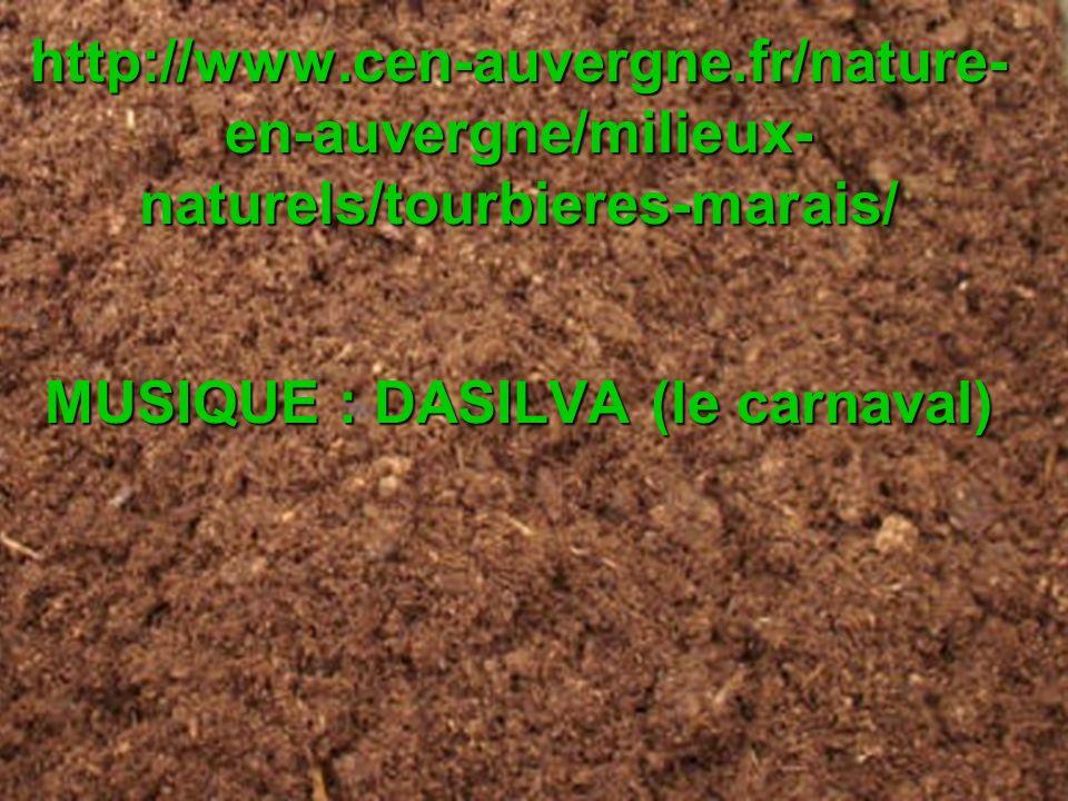 FIN SITEVISITÉ : http://www.cen-auvergne.fr/nature- en-auvergne/milieux- naturels/tourbieres-marais/ MUSIQUE : DASILVA (le carnaval) Merci davoir visionné ce diaporama