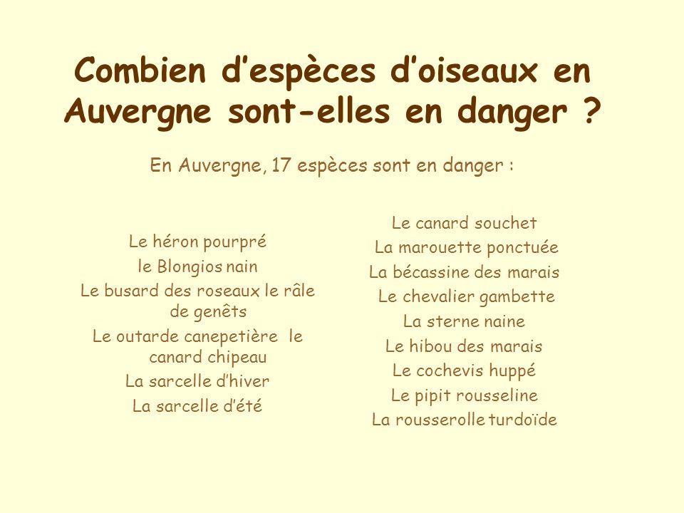 Combien despèces doiseaux en Auvergne sont-elles en danger .