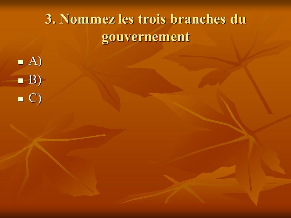 3. Nommez les trois branches du gouvernement A) A) B) B) C) C)