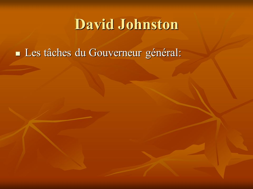 David Johnston Les tâches du Gouverneur général: Les tâches du Gouverneur général: