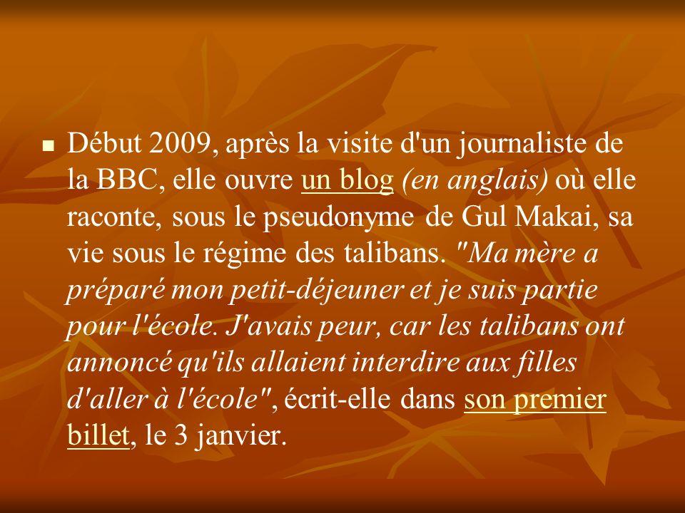 Début 2009, après la visite d'un journaliste de la BBC, elle ouvre un blog (en anglais) où elle raconte, sous le pseudonyme de Gul Makai, sa vie sous