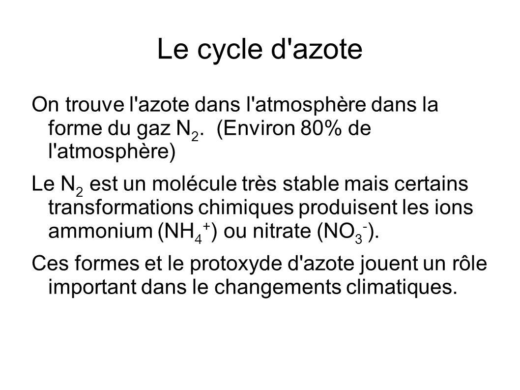 Le cycle d'azote On trouve l'azote dans l'atmosphère dans la forme du gaz N 2. (Environ 80% de l'atmosphère) Le N 2 est un molécule très stable mais c