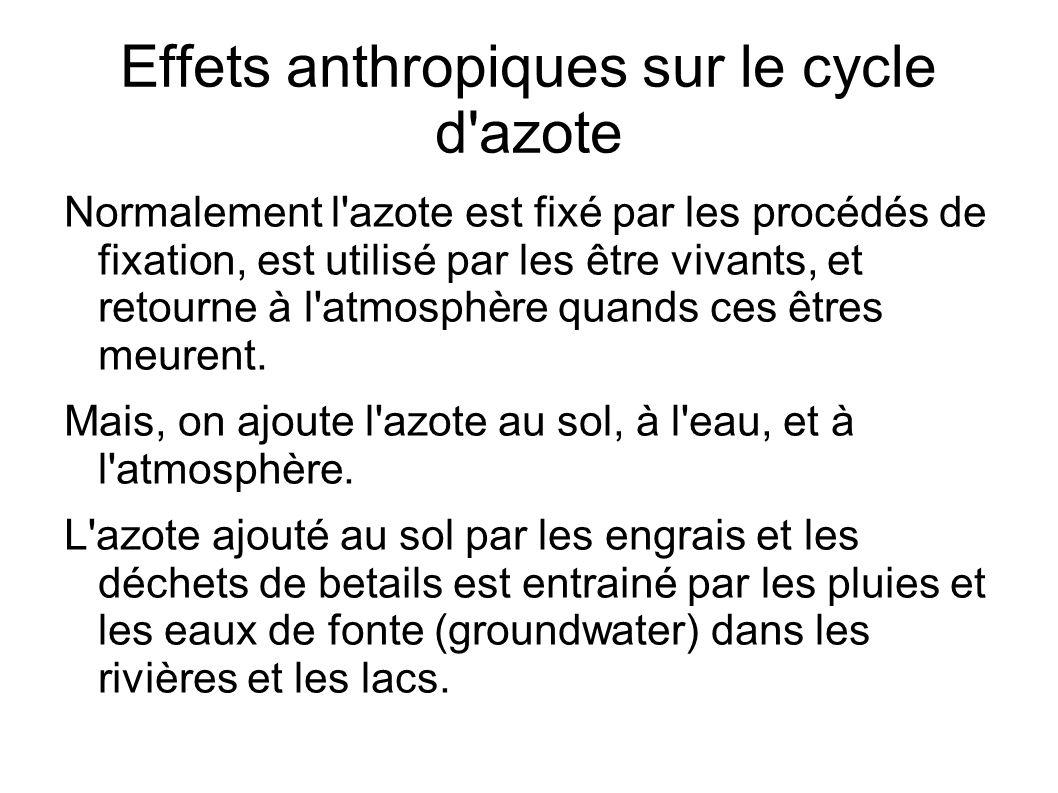 Effets anthropiques sur le cycle d'azote Normalement l'azote est fixé par les procédés de fixation, est utilisé par les être vivants, et retourne à l'