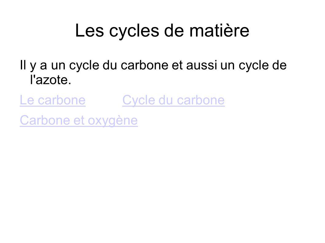 Les cycles de matière Il y a un cycle du carbone et aussi un cycle de l'azote. Le carboneCycle du carbone Carbone et oxygène