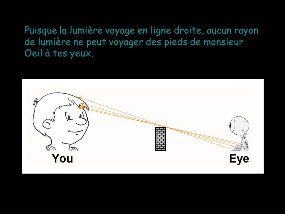 Puisque la lumière voyage en ligne droite, aucun rayon de lumière ne peut voyager des pieds de monsieur Oeil à tes yeux.