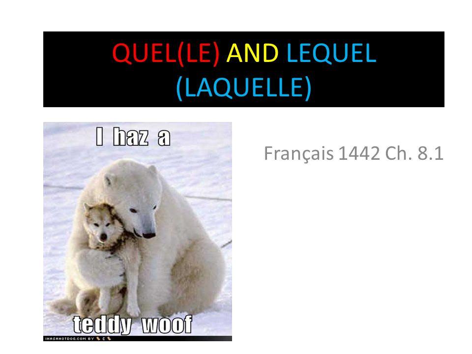 QUEL(LE) AND LEQUEL (LAQUELLE) Français 1442 Ch. 8.1