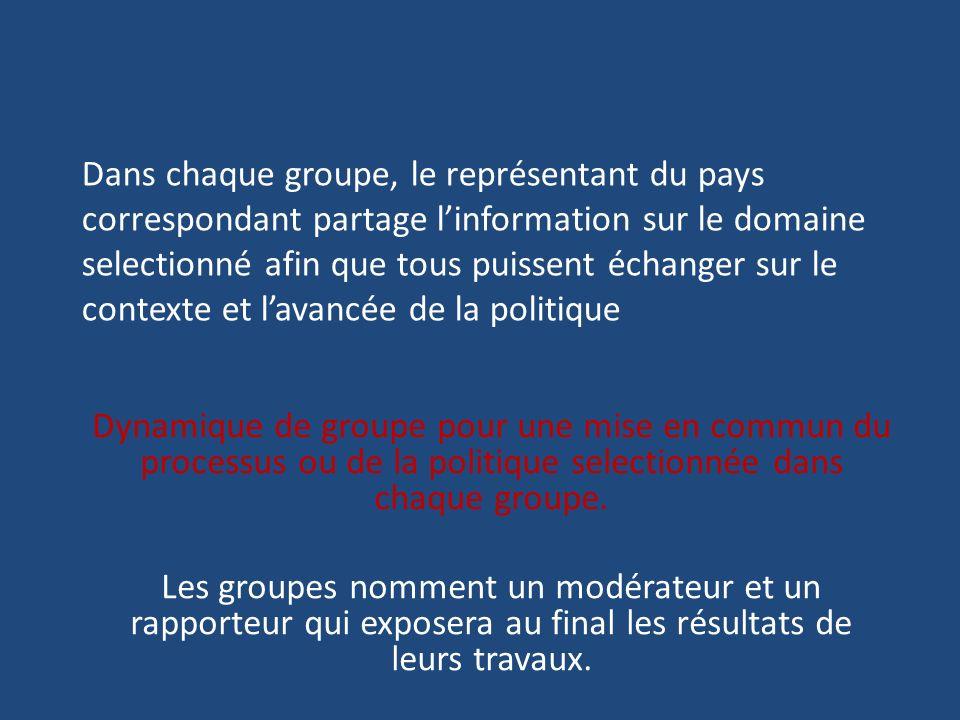 Dans chaque groupe, le représentant du pays correspondant partage linformation sur le domaine selectionné afin que tous puissent échanger sur le conte