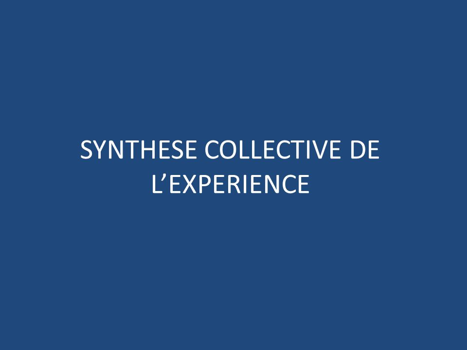SYNTHESE COLLECTIVE DE LEXPERIENCE