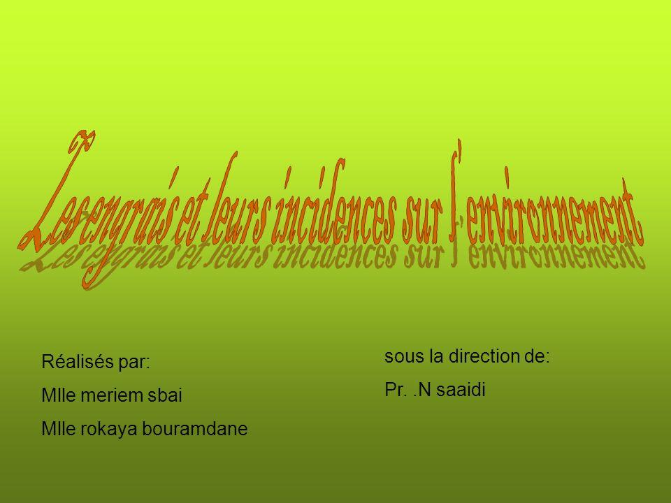 Réalisés par: Mlle meriem sbai Mlle rokaya bouramdane sous la direction de: Pr..N saaidi