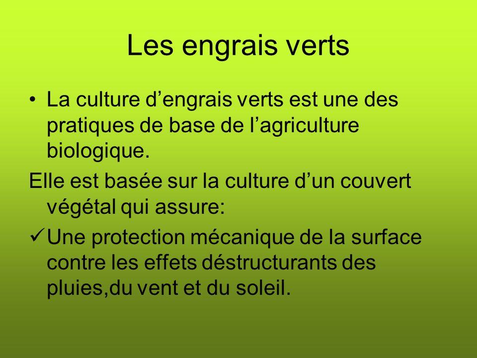 Les engrais verts La culture dengrais verts est une des pratiques de base de lagriculture biologique.