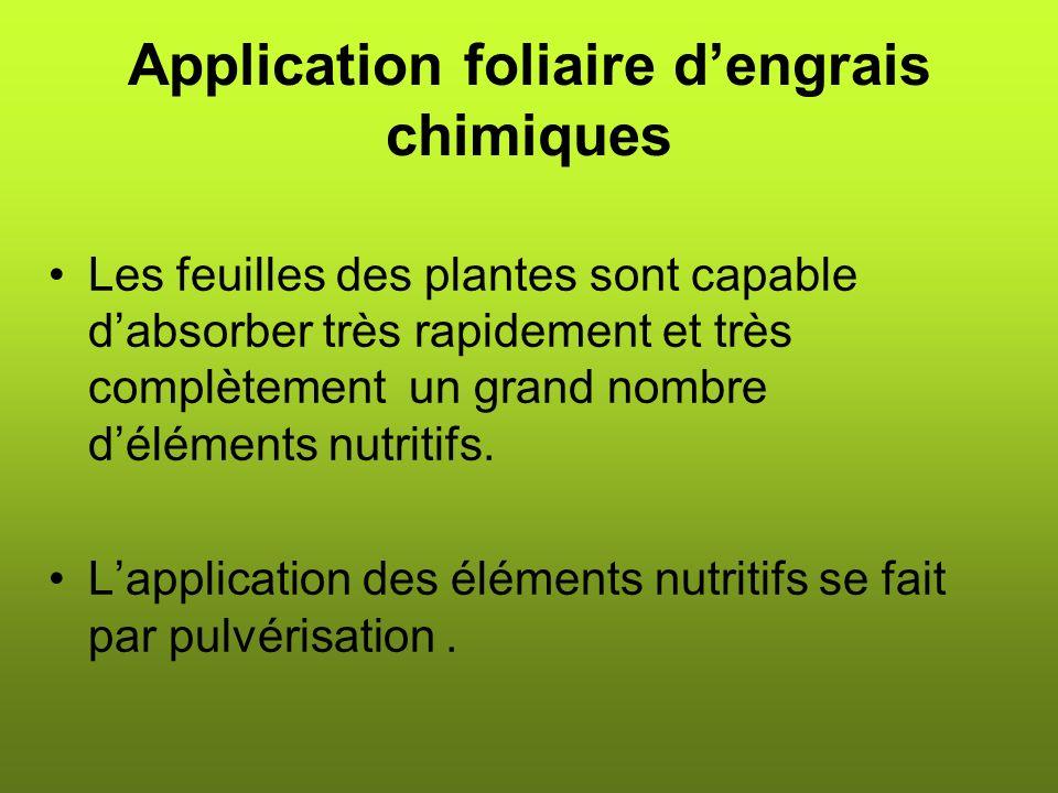 Application foliaire dengrais chimiques Les feuilles des plantes sont capable dabsorber très rapidement et très complètement un grand nombre déléments nutritifs.