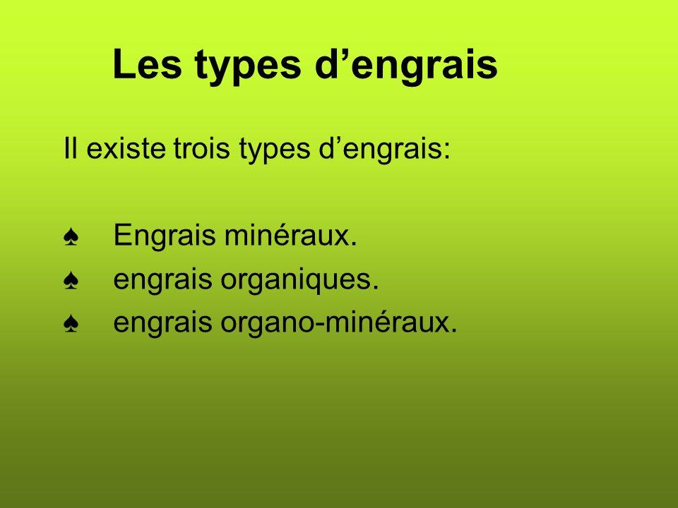 Les types dengrais Il existe trois types dengrais: Engrais minéraux.