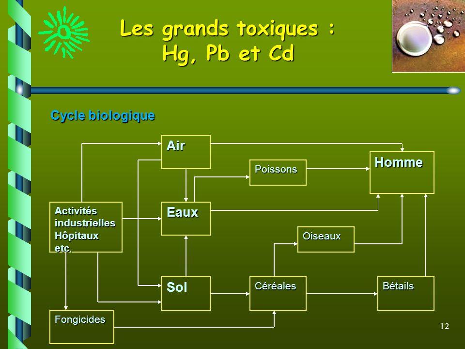 12 Les grands toxiques : Hg, Pb et Cd Cycle biologique Eaux Air Sol Fongicides Activités industrielles Hôpitaux etc. CéréalesBétails Oiseaux Poissons
