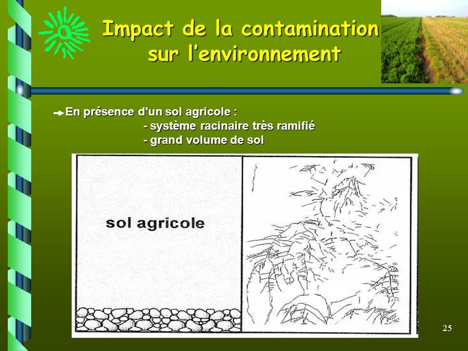 25 Impact de la contamination sur lenvironnement En présence d'un sol agricole : En présence d'un sol agricole : - système racinaire très ramifié - sy