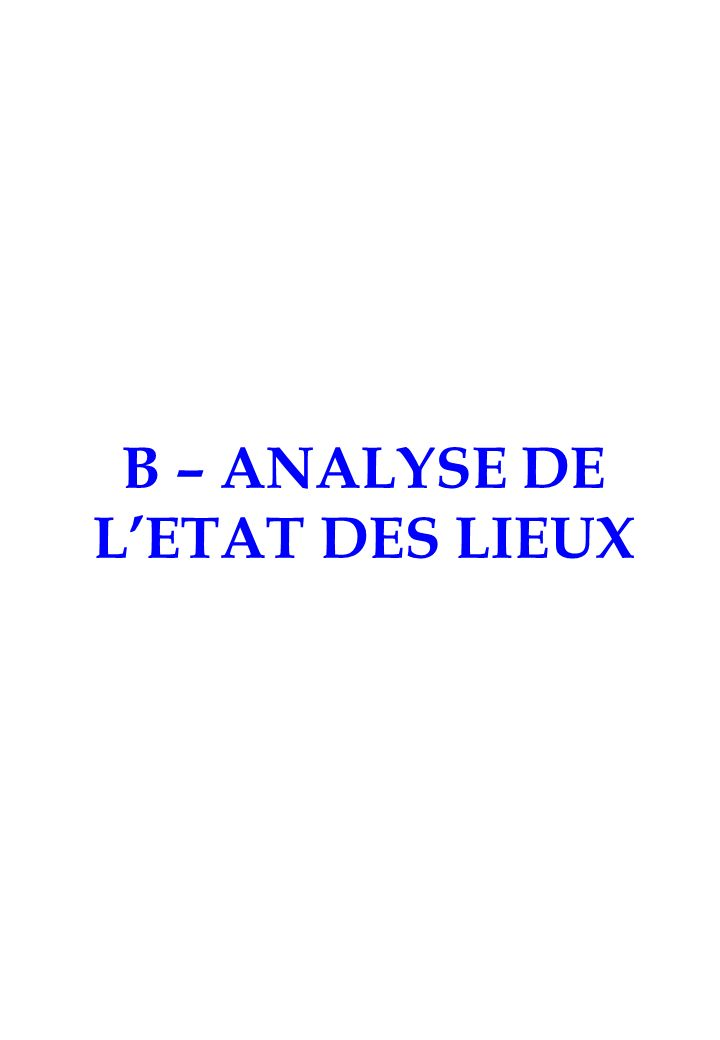 B – ANALYSE DE LETAT DES LIEUX
