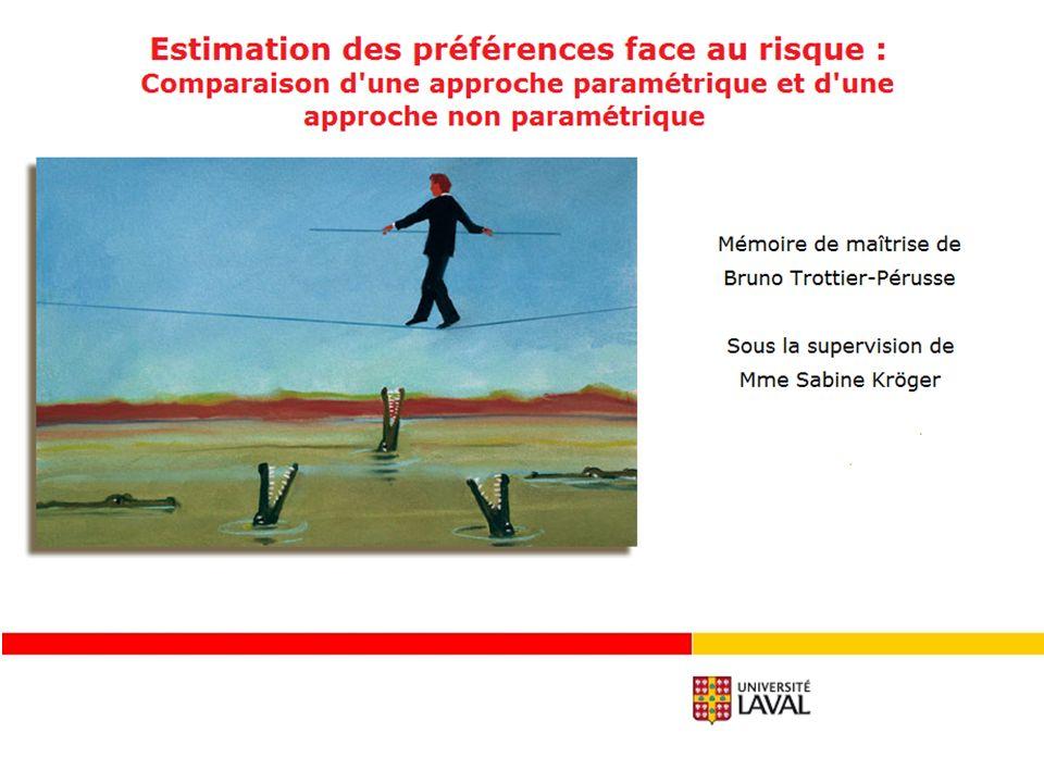 32 Quel est limpact de lintroduction dune erreur sur les estimations des préférences face au risque.