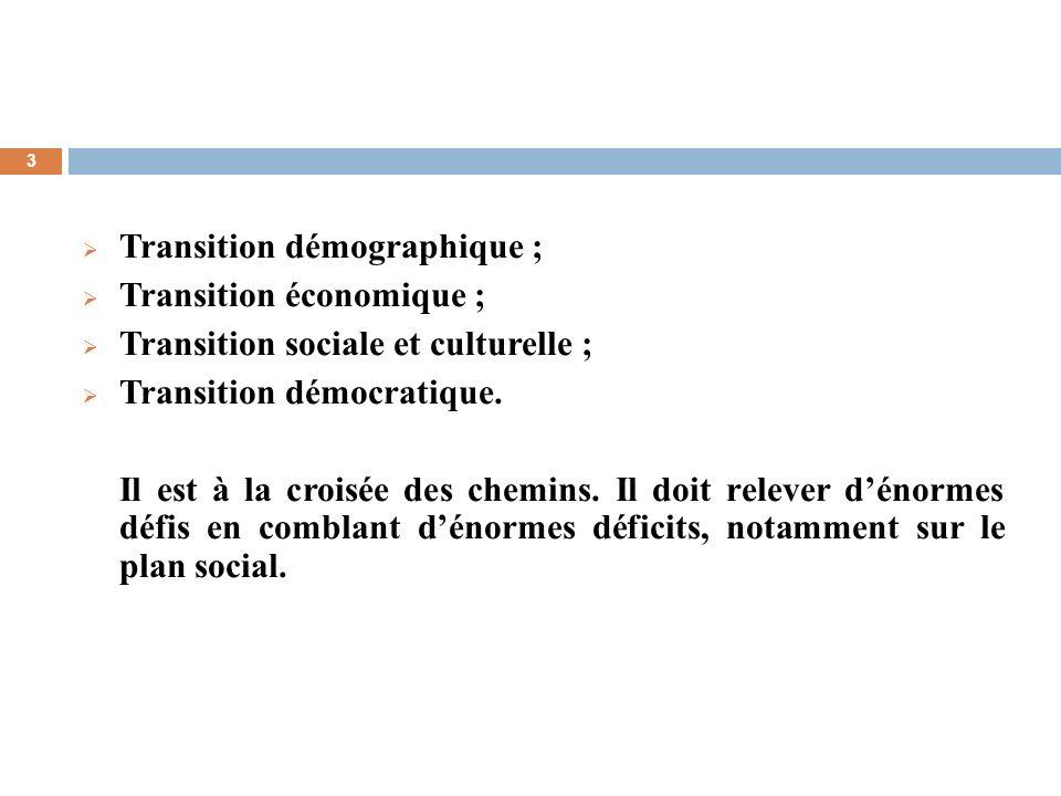 3 Transition démographique ; Transition économique ; Transition sociale et culturelle ; Transition démocratique. Il est à la croisée des chemins. Il d