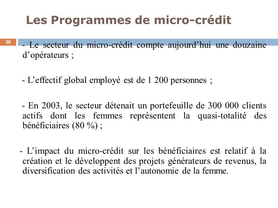 Les Programmes de micro-crédit 30 - Le secteur du micro-crédit compte aujourdhui une douzaine dopérateurs ; - Leffectif global employé est de 1 200 pe