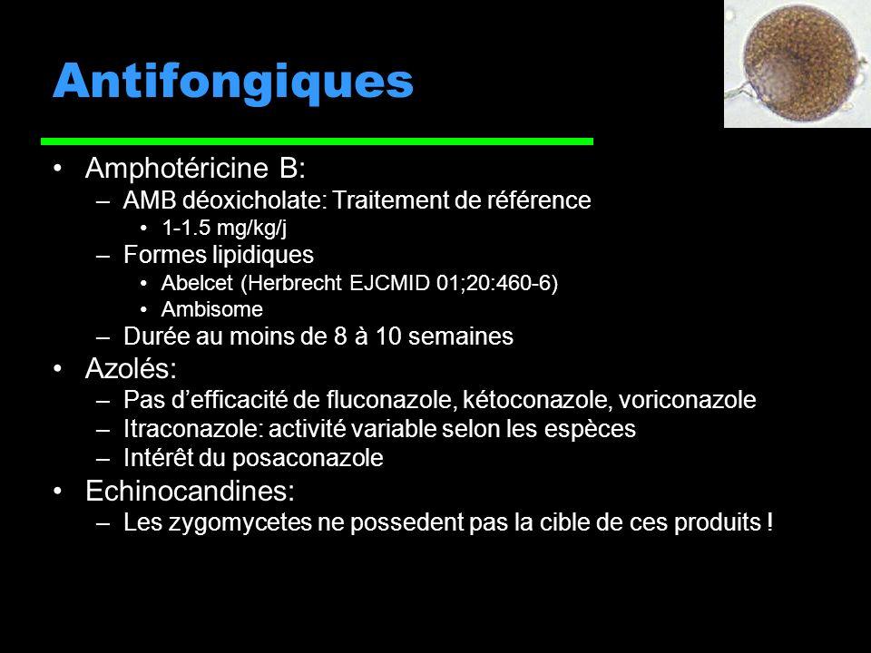 Antifongiques Amphotéricine B: –AMB déoxicholate: Traitement de référence 1-1.5 mg/kg/j –Formes lipidiques Abelcet (Herbrecht EJCMID 01;20:460-6) Ambisome –Durée au moins de 8 à 10 semaines Azolés: –Pas defficacité de fluconazole, kétoconazole, voriconazole –Itraconazole: activité variable selon les espèces –Intérêt du posaconazole Echinocandines: –Les zygomycetes ne possedent pas la cible de ces produits !