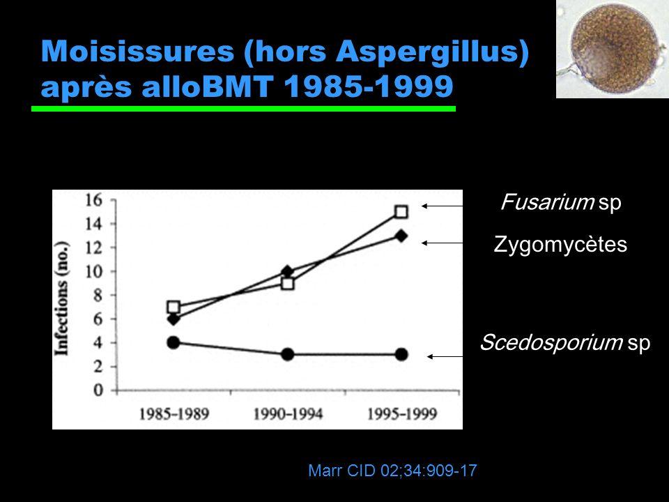Moisissures (hors Aspergillus) après alloBMT 1985-1999 Zygomycètes Fusarium sp Scedosporium sp Marr CID 02;34:909-17