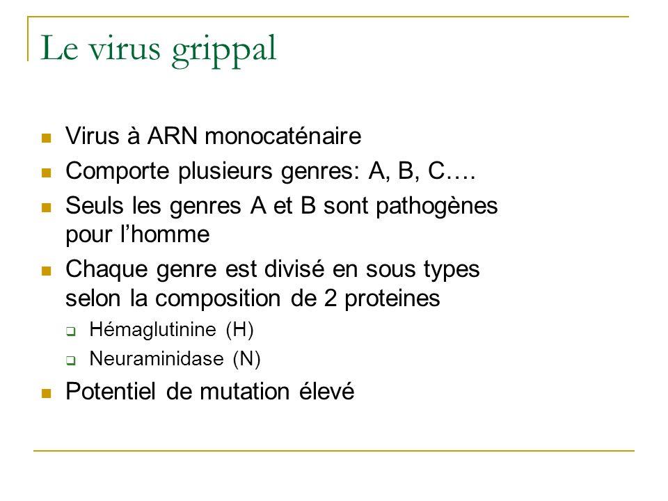 Le virus grippal Virus à ARN monocaténaire Comporte plusieurs genres: A, B, C…. Seuls les genres A et B sont pathogènes pour lhomme Chaque genre est d