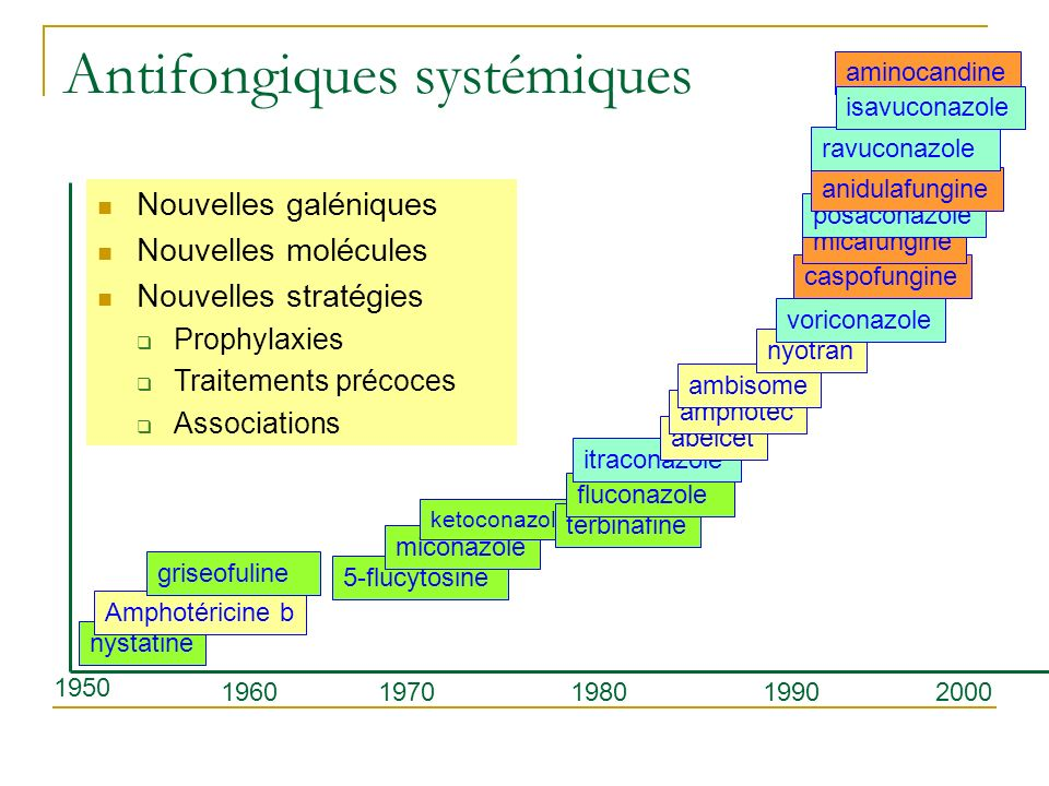 nystatine Amphotéricine b griseofuline 1950 1960 5-flucytosine miconazole ketoconazole 197019801990 terbinafine fluconazole itraconazole abelcet ampho