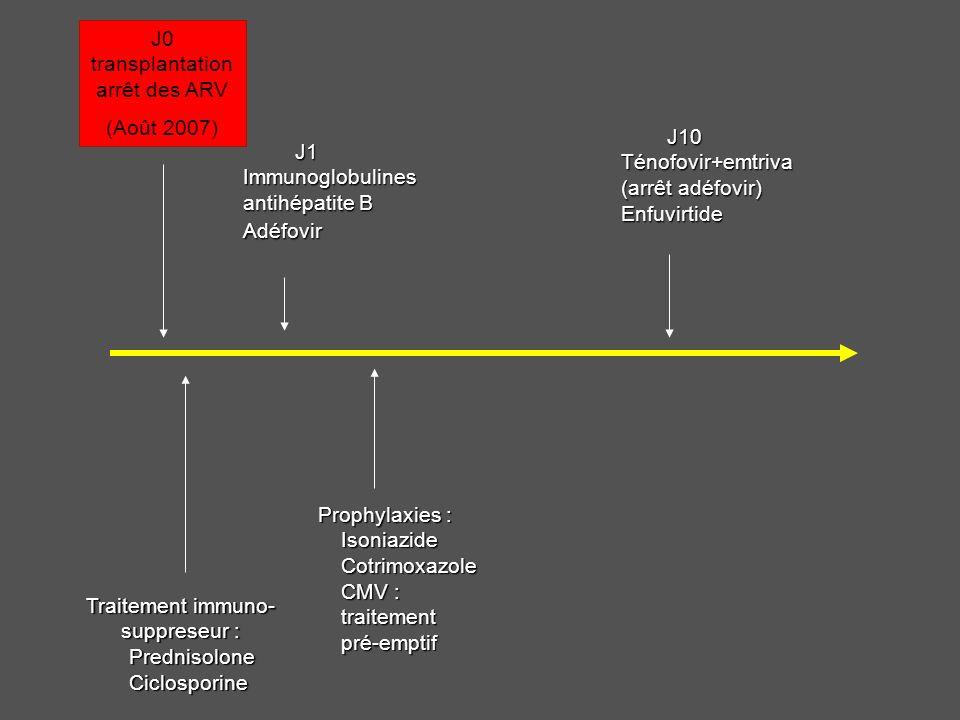 J0 transplantation arrêt des ARV (Août 2007) J1 Immunoglobulines antihépatite B Adéfovir J10 Ténofovir+emtriva (arrêt adéfovir) Enfuvirtide Traitement