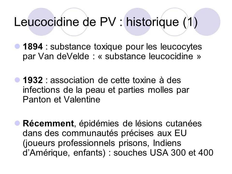 Leucocidine de PV : historique (2) Europe mise en évidence dun clone ST80 antibiogramme évocateur Méti R, Kana R, Tobra S, FQ S, Fuci I ou R Clinique : oPeau : abcès, furoncles, fasciite nécrosante oPoumons: pneumopathie nécrosante, pleurésie oAutre : ostéomyélite