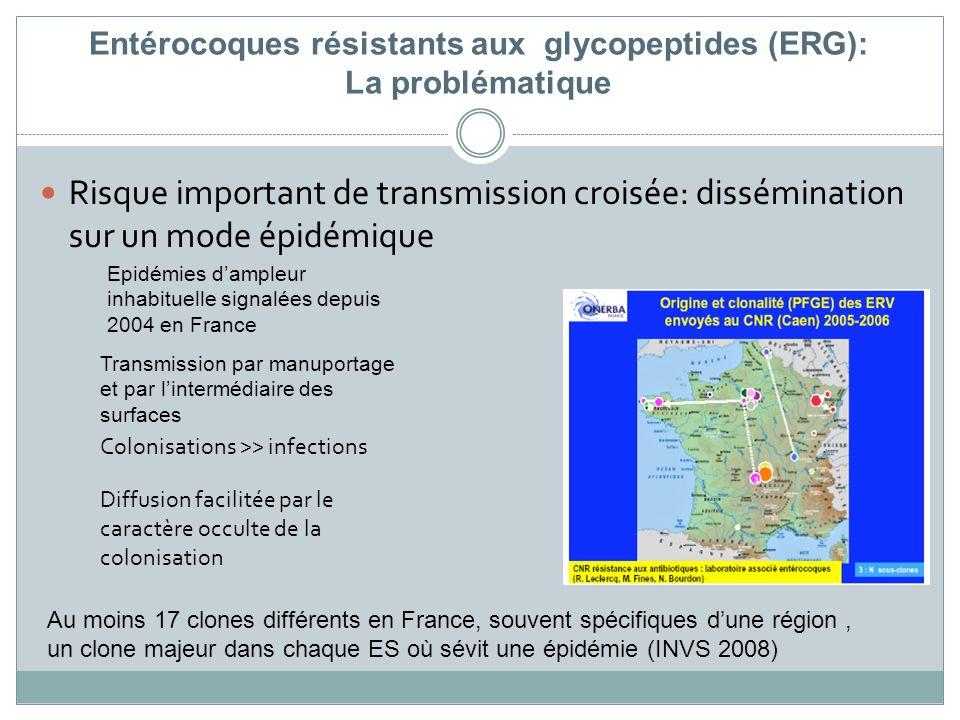 Entérocoques résistants aux glycopeptides (ERG): La problématique Risque important de transmission croisée: dissémination sur un mode épidémique Colon