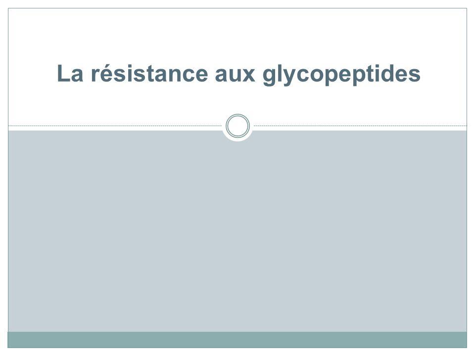 La résistance aux glycopeptides